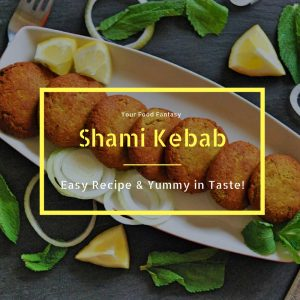 Easy Shami Kebab Recipe   YourFoodFantasy.com
