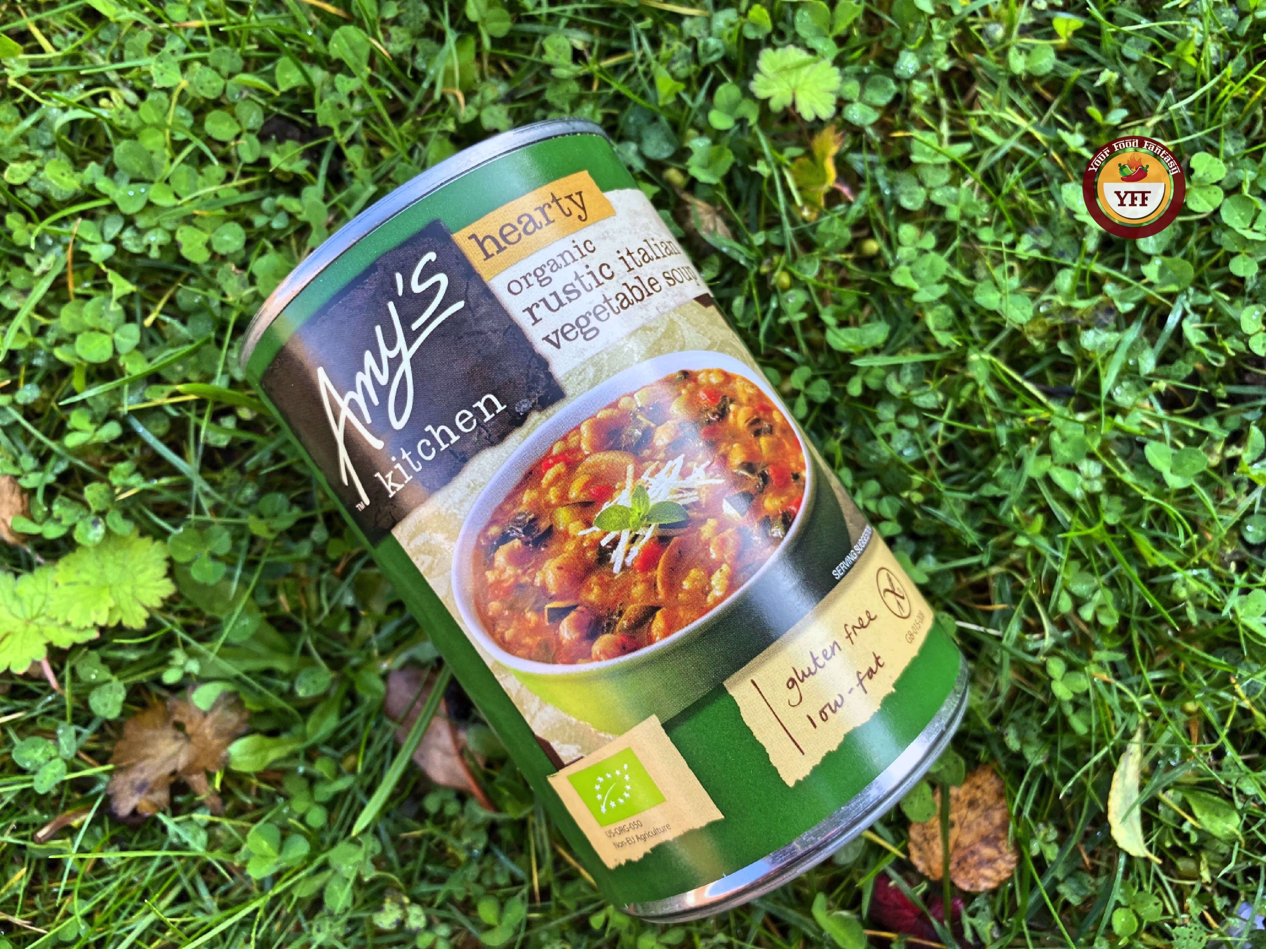 Amy's Kitchen Vegetable Soup   Review by YourFoodFantasy