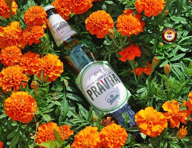 Pravha Beer Review   Your Food Fantasy