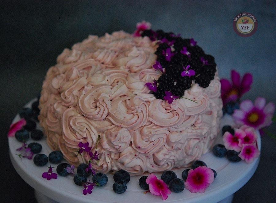 Blackberry Chocolate Cake Recipe | Your Food Fantasy
