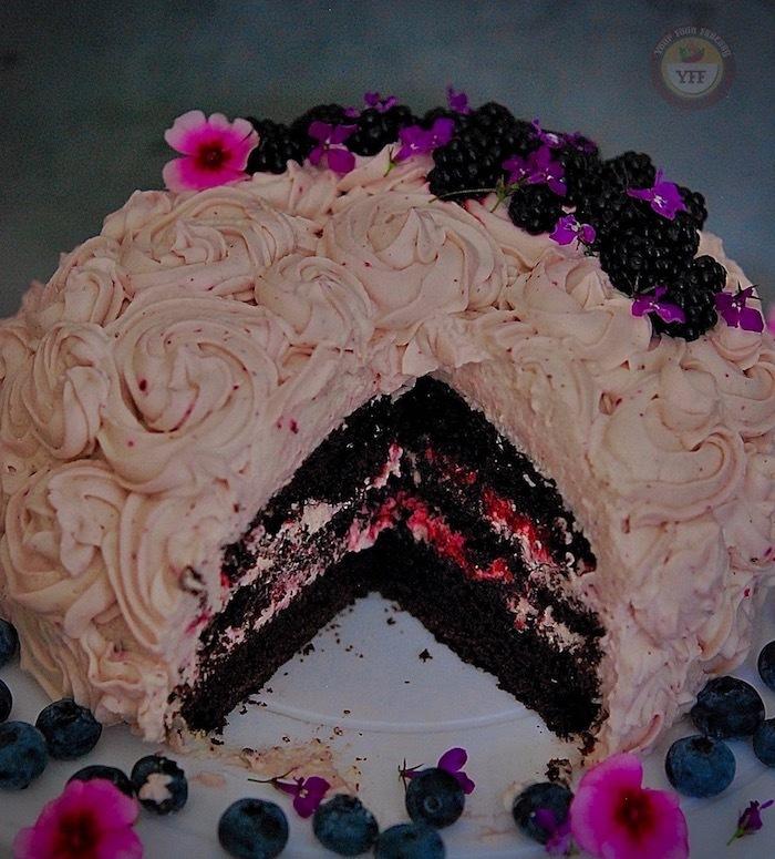 Blackberry and Chocolate Cake Recipe